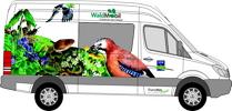 Fahrzeugbeschriftung Waldmobil Entwurf